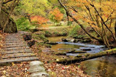 【福岡の映像制作向けロケ地】二丈渓谷 – ハイキングやお散歩の撮影