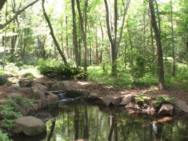 【福岡の映像制作向けロケ地】三日月渓流公園 – 水車や小川など自然風景の撮影
