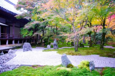 【福岡の映像制作向けロケ地】光明禅寺 – 枯山水など日本庭園やお寺の撮影